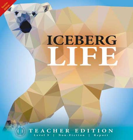 Iceberg Life 6-pack (Level 9)