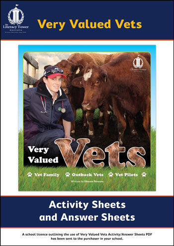 Very Valued Vets Activity / Answer Sheets PDF