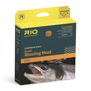 RIO Scandi Body Shooting Head