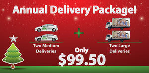 Annual Delivery Package