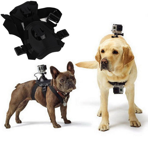 Fetch dog Harness Mount for GoPro
