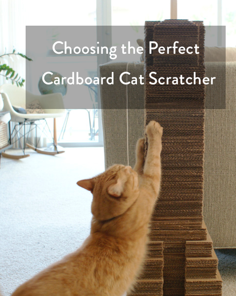 Choosing the perfect Cardboard Cat Scratcher