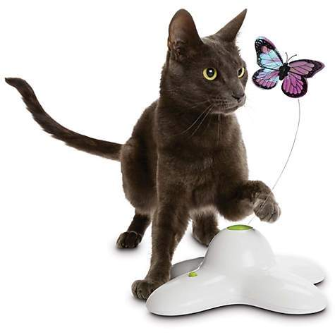 Feline Be Mine Winged Chase Toy - Electric Rotating Butterfly