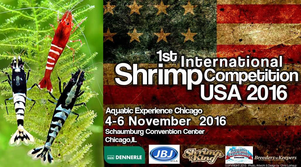 1st International Shrimp Competition USA 2016