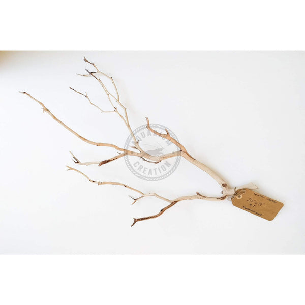 Nano Series Manzanita Driftwood - Piece #7 - Woods, Leaves, Natural Products - Aquarium Creation