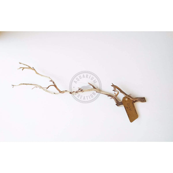 Nano Series Manzanita Driftwood - Piece #8 - Woods, Leaves, Natural Products - Aquarium Creation