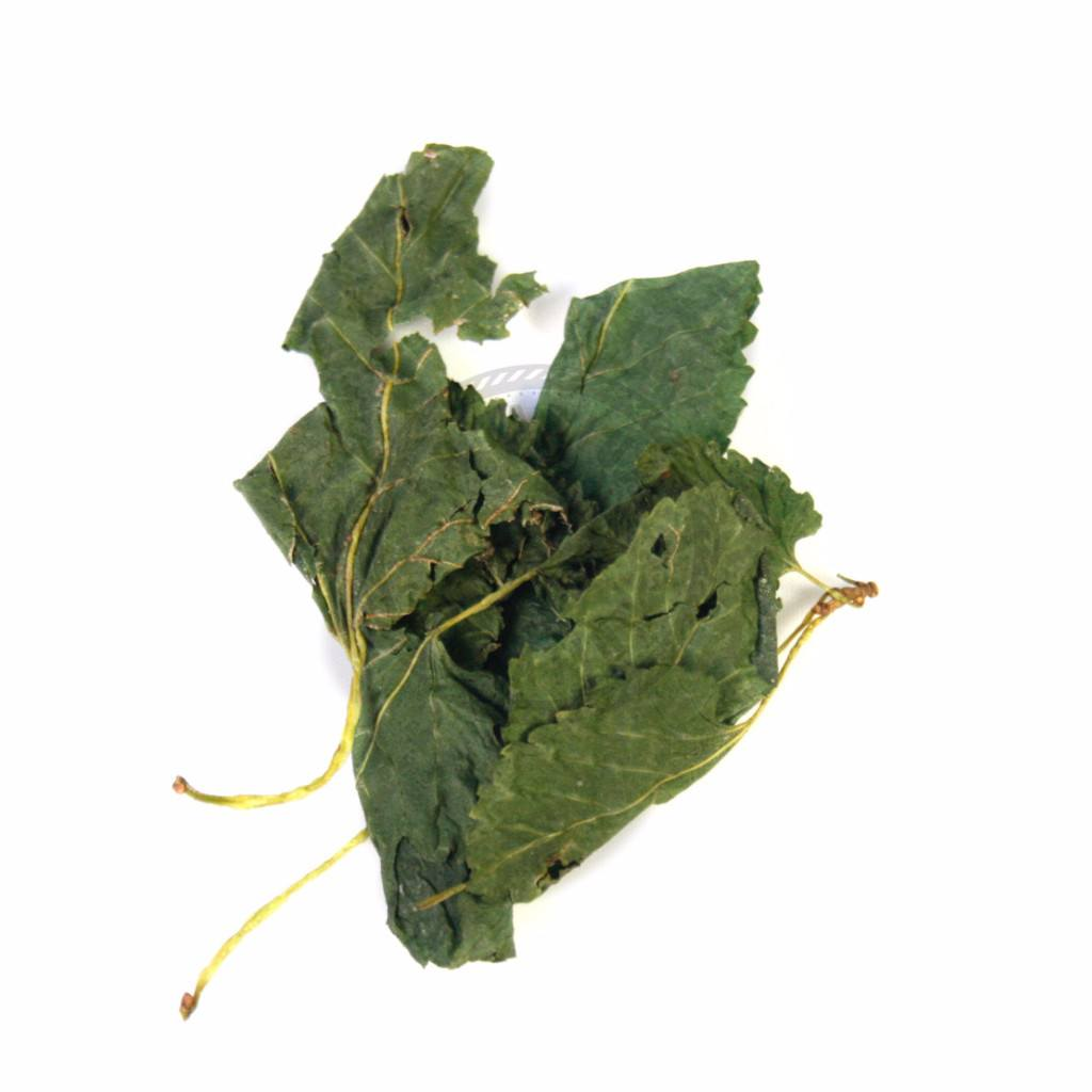 Woods, Leaves, Natural Products - Mulberry Leaves