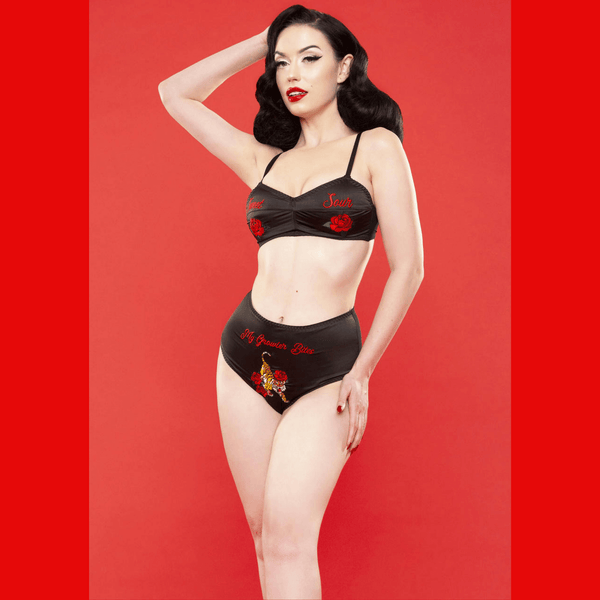 Bettie Page Retro Embroidery Brief, Lingerie, Playful Promises - Passionate Jade