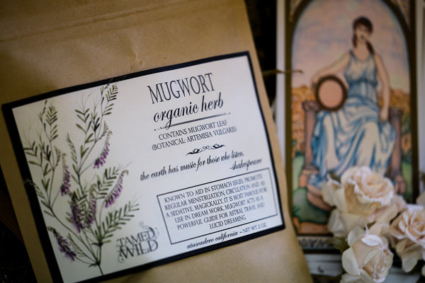 2oz Bag of Mugwort