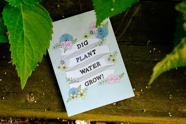 Wild Flower Seed Packet