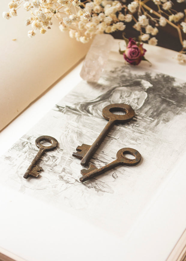 Skeleton Key Set