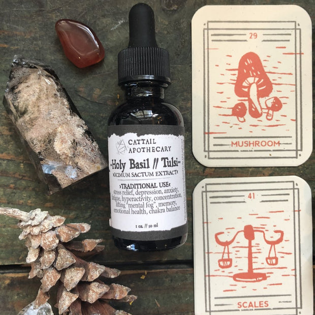 Holy Basil Tincture by Cattail Apothecary