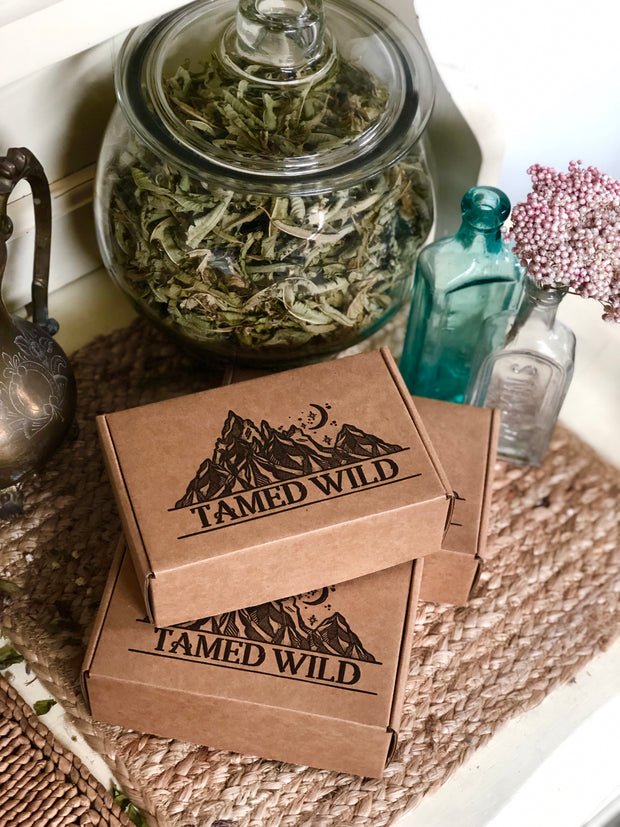 Three Tamed Wild Mini Surprise boxes stacked by random glass gars