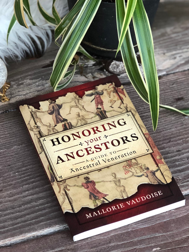Cover of the book Honoring your Ancestor.