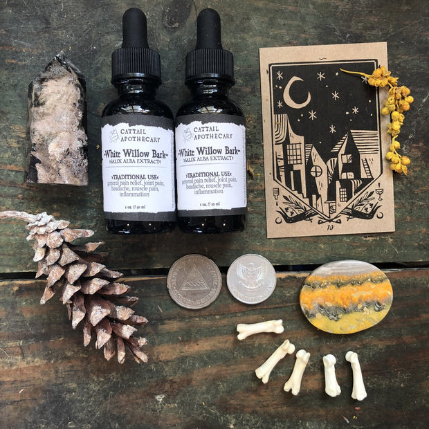 White Willow Tincture by Cattail Apothecary