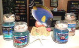 Under the Sea Super Scented Gel Candles - Cortez Candle's - 1
