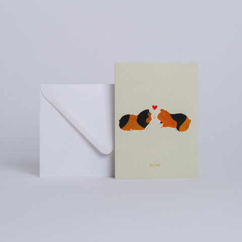 *COCHON D'INDE* Season Paper collection