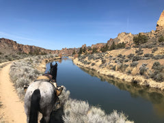 Horse next to a river by smith rock park