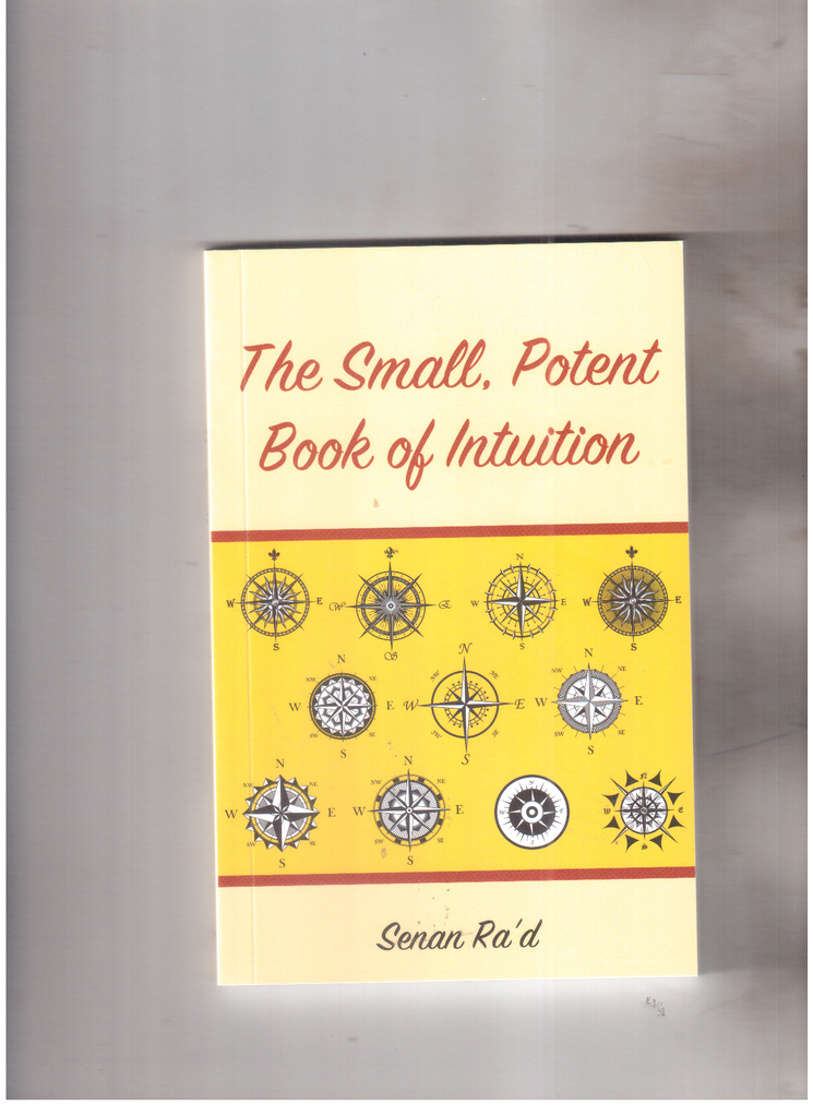 the samll potent book of intuition