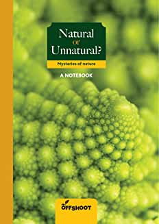 Natural or Unnatural: Mysteries of Nature (Forever Notebooks)