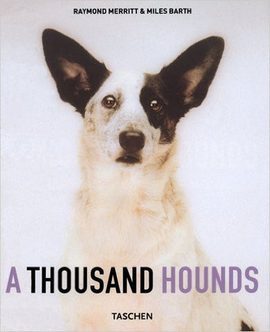 A Thousand Hounds