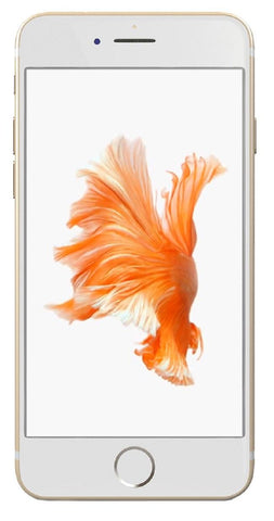 Refurbished Apple iPhone 6s 64GB, Gold - Unlocked GSMRefurbished Apple iPhone 6s 64GB, Gold - Unlocked GSM