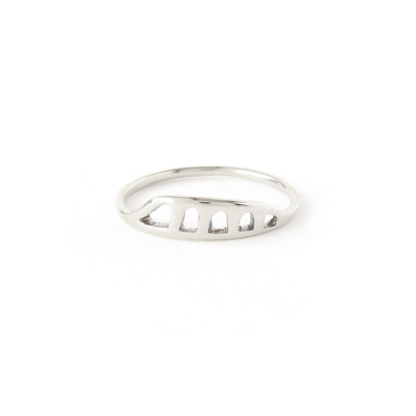 The Terrain Ring in Silver
