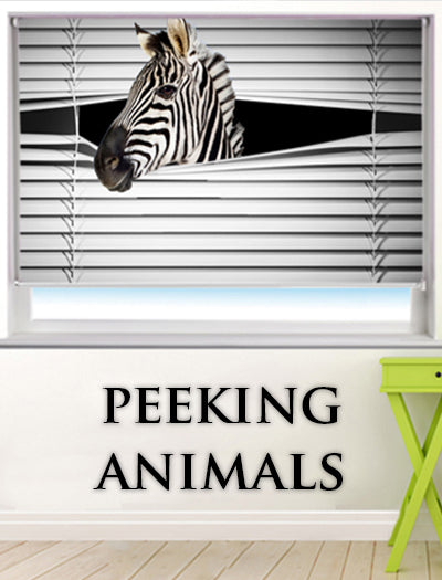 animal picture roller blinds