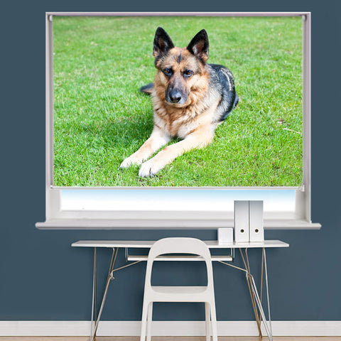 Your Own Pet Animal Photo Printed Picture Roller Blind - RB731 - Art Fever