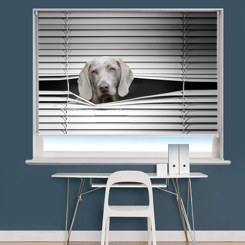 Your Own Pet Animal Peeking Image Printed Roller Blind - RB864 - Art Fever