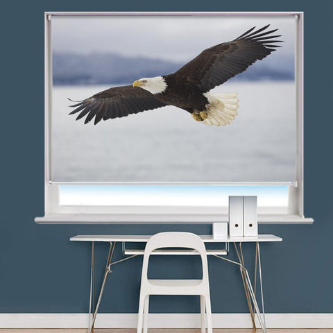 Bald Eagle Image Printed Roller Blind - RB961 - Art Fever - Art Fever