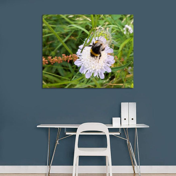 Bee Close Up Floral Canvas Print Wall Art - SH24 - Art Fever - Art Fever