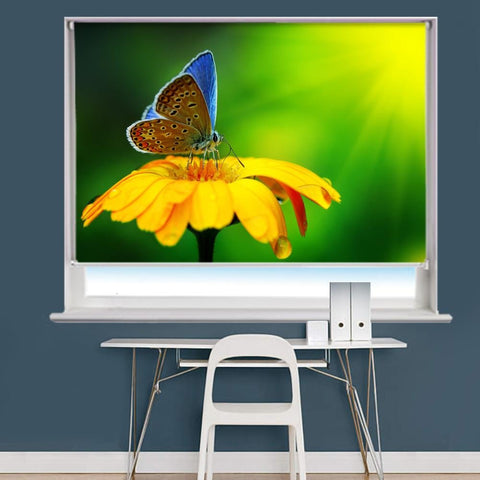 Blue Butterfly Image Printed Roller Blind - RB962 - Art Fever - Art Fever