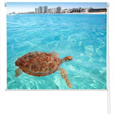 Cancun Turtle Printed Photo Picture Roller Blind - RB56 - Art Fever - Art Fever