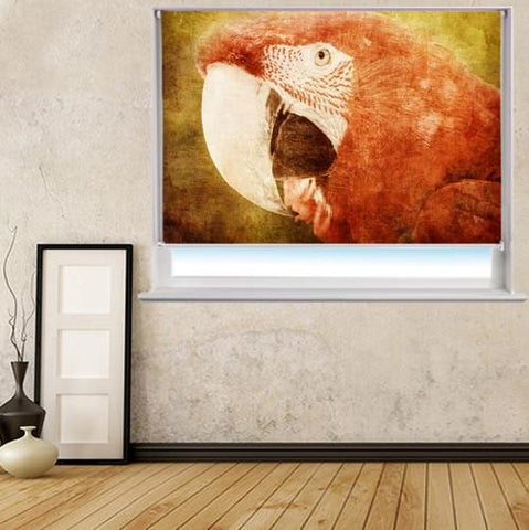 close up parrot Grunge Effect Printed Picture Photo Roller Blind - RB174 - Art Fever - Art Fever
