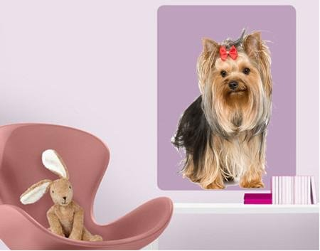 DCS22 - life size Yorkshire terrier dog removable wall sticker - Art Fever - Art Fever