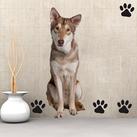 DCS39 - large Saarlooswolf Dog removable wall decal - Art Fever - Art Fever