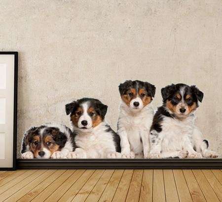 DCS42 - Border Collie Puppies removable wall decal set - Art Fever - Art Fever