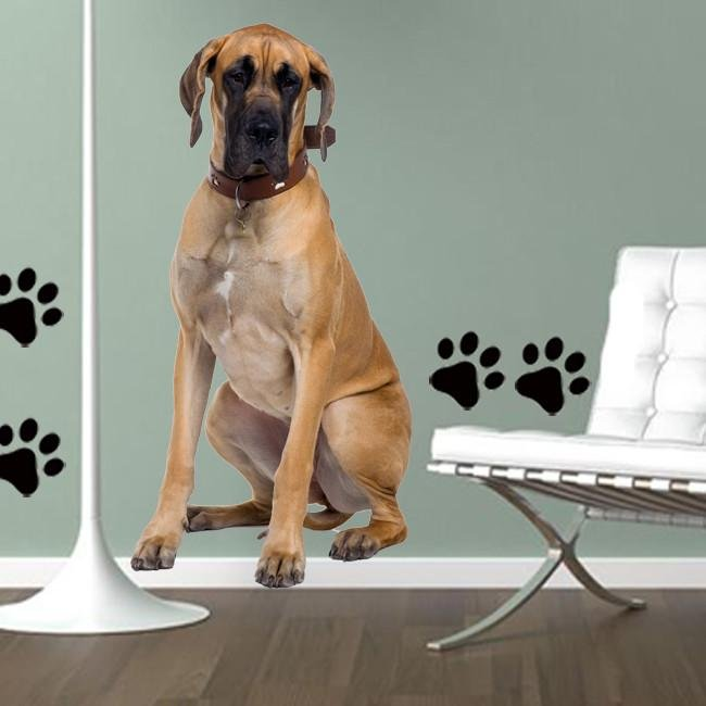 DCS7 - life size great Dane removable dog wall decal - Art Fever - Art Fever