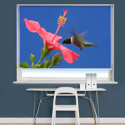Hummingbird Image Printed Roller Blind - RB973 - Art Fever - Art Fever