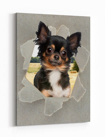 King Charles Cavalier Peeking through the Canvas Dog Scene Printed Canvas Print Picture - SPC189 - Art Fever - Art Fever