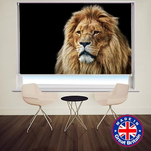 Lion Close up Printed Photo Roller Blind - Art Fever - Art Fever