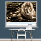 Lion Image Printed Roller Blind - RB846 - Art Fever - Art Fever