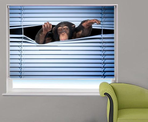 monkey peeking through the blind Printed Picture Photo Roller Blind - RB225 - Art Fever - Art Fever