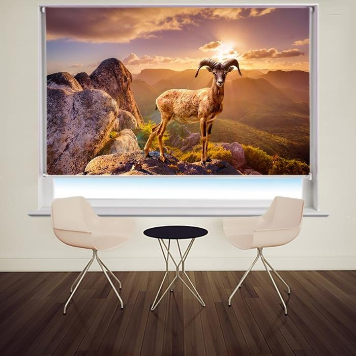 Mountain Deer on top of the Mountain Printed Picture Photo Roller Blind - RB680 - Art Fever - Art Fever