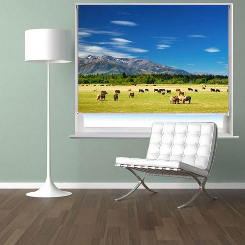 New Zealand landscape Printed Picture Photo Roller Blind - RB47 - Art Fever - Art Fever