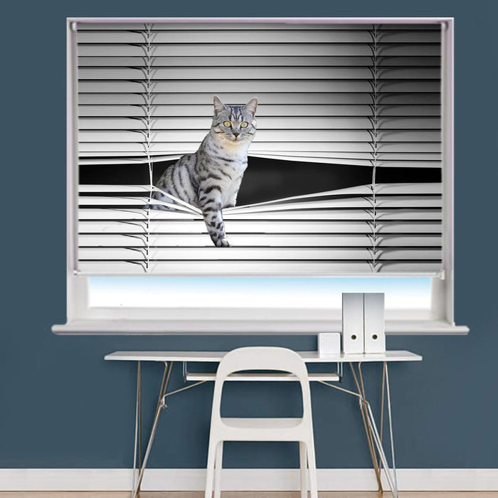 Peeking Cat Image Printed Roller Blind - RB862 - Art Fever - Art Fever