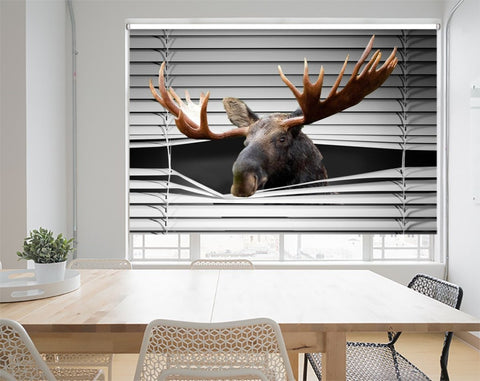 Peeking Moose Printed Picture Photo Roller Blind - RB1037 - Art Fever - Art Fever