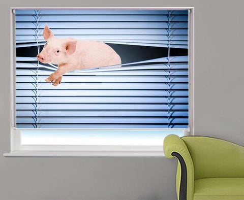 Pig Peeking through the blind Printed Picture Photo Roller Blind - RB230 - Art Fever - Art Fever