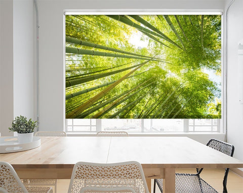 Printed Picture Photo Roller Blind Low Angle View Of Bamboo Forest - RB1008 - Art Fever - Art Fever